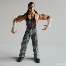 Figuras y Muñecos Pressing Catch: WWE MATT HARDY SERIE RUTHLESS AGGRESSION. Lote 150690642