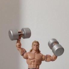 Figuras y Muñecos Pressing Catch: FIGURA DE MATTEL WWE ELITE 30 LEX LUGER. Lote 295339463