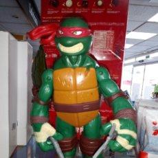 Figuras y Muñecos Tortugas Ninja: TORTUGA NINJA. TAMAÑO GRANDE 24 CM ALTO. PLAYMATES TOYS. 2012. Lote 183573012