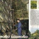 Folletos de turismo: DESPEGALBE 4 HOJAS DOBLES A DOS CARAS, LA RIOJA, LOGROÑO, CON FOTOS. Lote 28278111