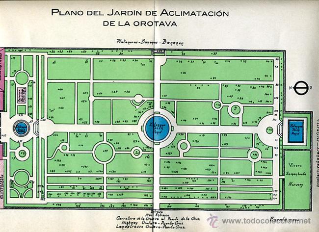 Folletos de turismo: FOLLETO JARDIN DE ACLIMATACION DE LA OROTAVA , TENERIFE ,CANARIAS ,ORIGINAL ,BO - Foto 5 - 43584833