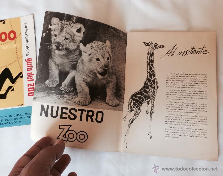 Folletos de turismo: GUIA DEL ZOO DE BARCELONA + SUPLEMENTO - AÑO 1962 - MUY BONITOS - Foto 3 - 43819142