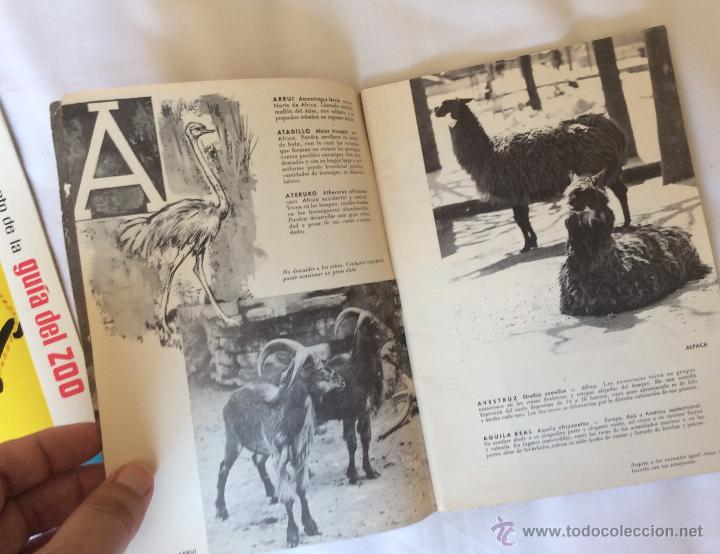 Folletos de turismo: GUIA DEL ZOO DE BARCELONA + SUPLEMENTO - AÑO 1962 - MUY BONITOS - Foto 4 - 43819142