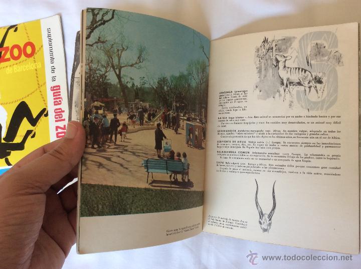 Folletos de turismo: GUIA DEL ZOO DE BARCELONA + SUPLEMENTO - AÑO 1962 - MUY BONITOS - Foto 5 - 43819142