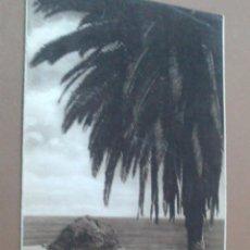 Folletos de turismo: TRIPTICO DE SANTA CRUZ DE TENERIFE,. PATRONATO DE TURISMO, CON FOTOS, . Lote 55037123