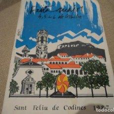 Folletos de turismo: SANT FELIU DE CODINES FESTA MAJOR 1987. Lote 68788261