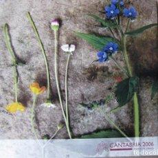 Folletos de turismo: CANTABRIA 2006. TIERRA DE JÚBILO. Lote 69896257