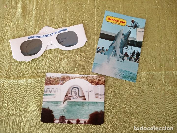MARINELAND OF FLORIDA,LOTE DE GAFAS 3 D,POSTAL Y FOTOGRAFÍA,AÑOS 70/80 (Coleccionismo - Folletos de Turismo)