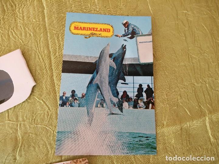 Folletos de turismo: marineland of florida,lote de gafas 3 d,postal y fotografía,años 70/80 - Foto 3 - 118833811