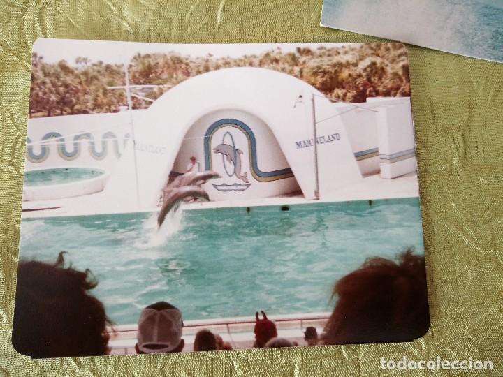 Folletos de turismo: marineland of florida,lote de gafas 3 d,postal y fotografía,años 70/80 - Foto 4 - 118833811