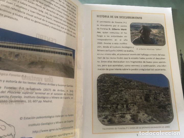 Folletos de turismo: Folleto de visita turística a Centro Paleontológico Fonelas P-1. Guadix, Granada, Andalucía. 28 pp. - Foto 2 - 194348860