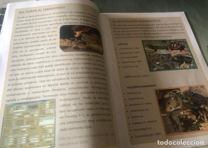 Folletos de turismo: Folleto de visita turística a Centro Paleontológico Fonelas P-1. Guadix, Granada, Andalucía. 28 pp. - Foto 2 - 194348930