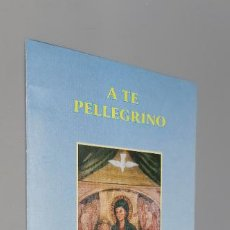 Folletos de turismo: SANTUARIO MADONNA DEL DIVINO AMORE CASA DEL PELLEGRINO ROMA. Lote 245430960