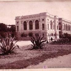 Fotografía antigua: NAPOLI. VILLA NAZIONALE. FOTOGRAFÍA: GIORGIO SOMMER. 1880-1890 APROX.. Lote 12532439