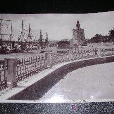 Fotografía antigua: SEVILLA - PASEO DE LAS DELICIAS Y TORRE DEL ORO, FINALES DEL SIGLO XIX APROX. Lote 11206540