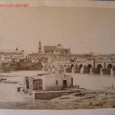 Fotografía antigua: ALBUMINA DE CORDOBA - VISTA PARCIAL. Lote 26895701
