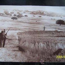 Fotografía antigua - FOTOGRAFÍA ( COPIA ) DE CAZADORES - MEDIDAS: 21 X 29 CM. - 31892451
