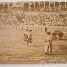 Fotografía antigua: CORRIDA DE TOROS - CORNEANDO A UN CABALLO - ALMELA FOTO. - AÑOS 1880-1890. Lote 21242727