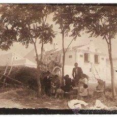 Fotografía antigua: ESCENA CAMPESTRES PP. S XX. . Lote 35384342