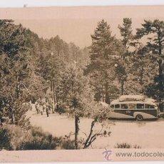 Fotografía antigua: AUTOBUS EN EL PUERTO DE NAVACERRADA.. Lote 37405105