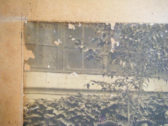 Fotografía antigua: VALENCIA TEATRO CIRCO APOLO 1905 - 1906 FOTOGRAFIA GRANDE 42 X 61 - Foto 8 - 38804530