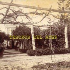 Fotografía antigua: ANTIGUA FOTOGRAFIA ALBUMINA ORIGINAL DEL FOTOGRAFO FRANCISCO ZAGALA, JARDIN DE LA CASA DEL SR. RUIZ,. Lote 38280845