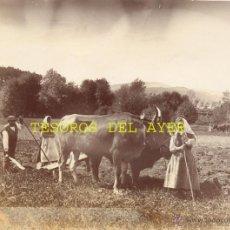 Fotografía antigua: ANTIGUA FOTOGRAFIA ALBUMINA ORIGINAL DEL FOTOGRAFO FRANCISCO ZAGALA, FAENAS CAMPESTRES, PONTEVEDRA, . Lote 38280912