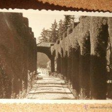 Fotografía antigua: ANTIGUA FOTOGRAFÍA - JARDINES DEL GENERALIFE - GRANADA - 1946 -. Lote 43192119