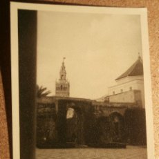 Fotografía antigua: ANTIGUA FOTOGRAFIA - GIRALDA Y ALCAZAR - 1946 -. Lote 43201784