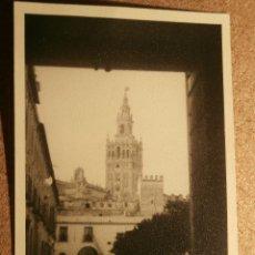 Fotografía antigua: ANTIGUA FOTOGRAFÍA - GIRALDA DESDE EL ALCAZAR - SEVILLA - 1946. Lote 43201816