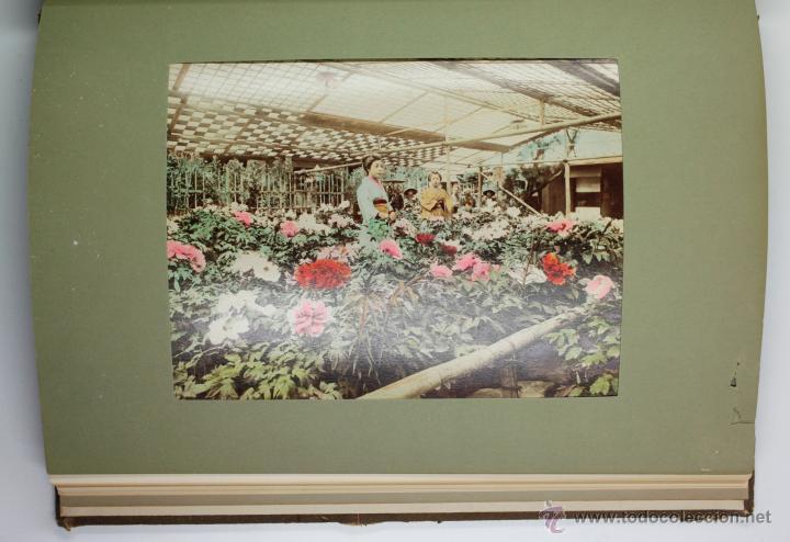 Fotografía antigua: JAPAN,1897-98, BRINKLEY, EDITION DE LUXE. Más de 200 albúminas y 9 collotipos. 9 álbumes. Ver fotos - Foto 62 - 44465154