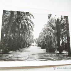 Fotografía antigua: ANTIGUA FOTOGRAFÍA- EXPLANADA DE ALICANTE.-7.5 X 10.3 CM.- S/F. Lote 44636325