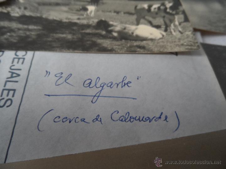 Fotografía antigua: foto el algarbe terriente teruel sierra albarracin lote de 6 fotos - Foto 5 - 48437387