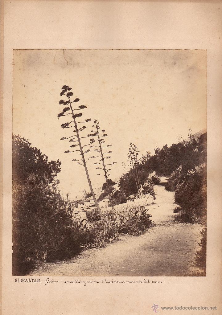 GIBRALTAR, 1860'S. ALBÚMINA 29X25 CM. SIN DATOS DEL FOTÓGRAFO. (Fotografía Antigua - Albúmina)