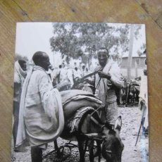 Fotografía antigua: FOTOGRAFIA ANTIGUA FAO ETIOPIA 1974 FOTOGRAFA SARAH ERRINGTON PROVINCIA TIGRE . Lote 53637672