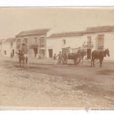 Fotografía antigua: UTRERA, 1900'S. FOTO 8,5X11 CM.. Lote 54459077