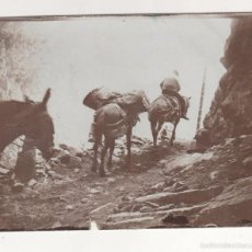 Fotografía antigua: ANTIGUA FOTO ALBÚMINA ATRIBUIDA A BALDOMER GILI I ROIG. ORIGINAL AÑOS 1900S. 12 X 8 CTMS.. Lote 55351335