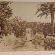 Fotografía antigua: ALBÚMINA DE SEVILLA, JARDINES DEL REAL ALCÁZAR, MEDIDAS 35,5X26 CM. Lote 56538084