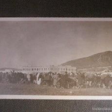Fotografía antigua: FOTOGRAFÍA - POSIBLEMENTE NORTE DE AFRICA EX-COLONIAS ESPAÑOLAS -. Lote 57126546