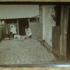 Fotografía antigua: NIÑAS JUGANDO CON LOS PERROS. Lote 58113860