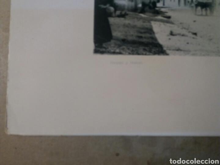 Fotografía antigua: Foto antigua. 25x32 Alicante. Puerto 1900 - Foto 3 - 74750807