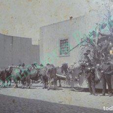 Fotografía antigua: FOTOGRAFÍA ANTIGUA ORIGINAL SOBRE CARTÓN. CARRETA. ROMERÍA. LAS PALMAS 1916. Lote 94015160