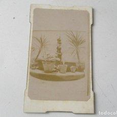 Fotografía antigua: ANTIGUA FOTOGRAFÍA- 10 X 6 CM.-SIN MÁS DATOS- . Lote 96024387