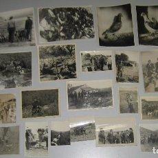 Fotografía antigua: LOTE FOTOGRAFÍAS CAZA - REHALA PERROS PIEZA BATIDA. Lote 98094363