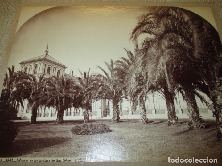 SEVILLA J. LAURENT Y CIA. 1341 PALMERAS DE LOS JARDINES DE SAN TELMO 33X25 CM CIRCA 1870, RARA (Fotografía Antigua - Albúmina)