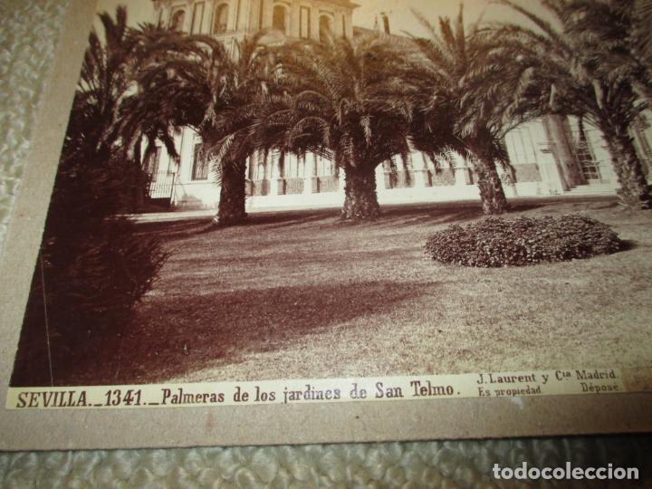 Fotografía antigua: Sevilla J. Laurent y Cia. 1341 Palmeras de los jardines de San Telmo 33x25 cm circa 1870, rara - Foto 2 - 110359011