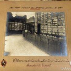 Fotografía antigua: CADIZ, PRINCIPIOS SIGLO XX,INTERIOR TIENDA CIA ANONIMA SUMINISTROS MARITIMOS,LEER MEDIDAS. Lote 112514699