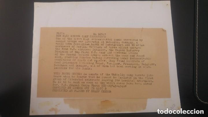 Fotografía antigua: Fotografía de prensa de nuevo campo de concentración nazi - Foto 2 - 147134230