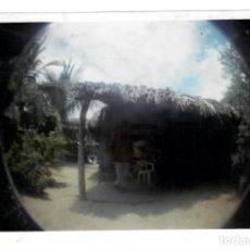 Fotografía antigua: ANTIGUA FOTOGRAFÍA - JARDÍN. Lote 147272550