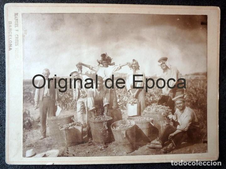 (JX-190288)MAGNIFICA FOTOGRAFÍA DE LA VENDIMIA,VENDIMIADORES,SIGLO XIX O PRINCIPIOS DEL XX. (Fotografía Antigua - Albúmina)
